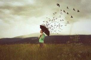 sateenvarjo onkin linnuista tehty