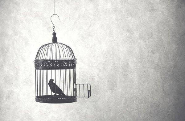 lintu häkissään