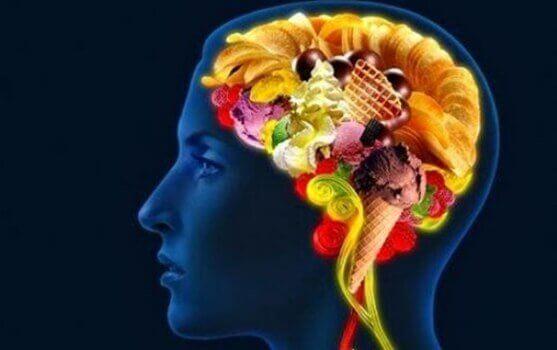 tunteiden ja ruoan välinen yhteys aivoissa
