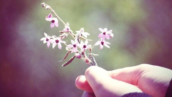 pienet kukat