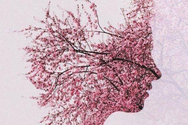 naisen kasvot ovat kukkiva puu