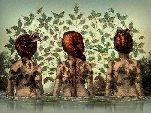 keskimmäisen naisen selästä kasvaa puu