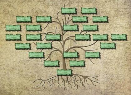 sukututkimus ja sukupuu