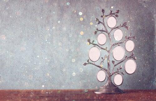 Sukupuu: työkalu kasvuun ja parantumiseen