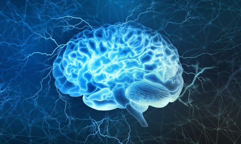 aivojen sähköisyys