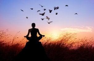 meditointia luonnossa