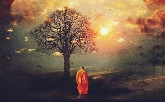 buddhalainen munkki