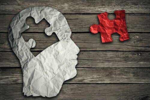 Persoonallisuuden, temperamentin ja luonteen erot