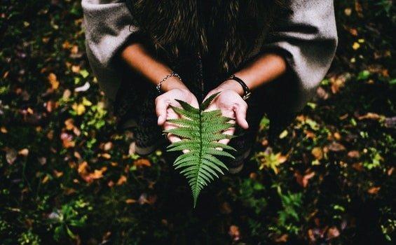 Elämän tarkoituksen löytämiseksi vaaditaan rauhaa ja kärsivällisyyttä