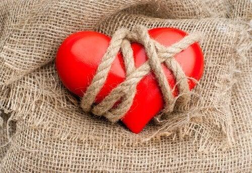 sydän on naruissa