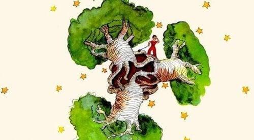 Baobab-puu sydämessä: mietteitä Pikku prinssistä