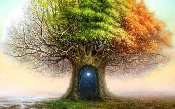 puu on maailmankaikkeus