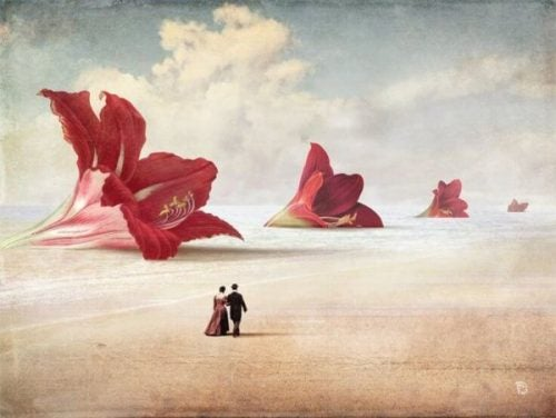 rakkauden evoluutio on kuin kukan eri vaiheet