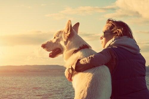 nainen koiransa kanssa katselemassa merelle