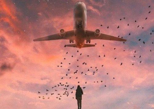 lentokone ja linnut