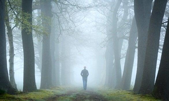 Metsätesti ja sen suhde psykoanalyysiin