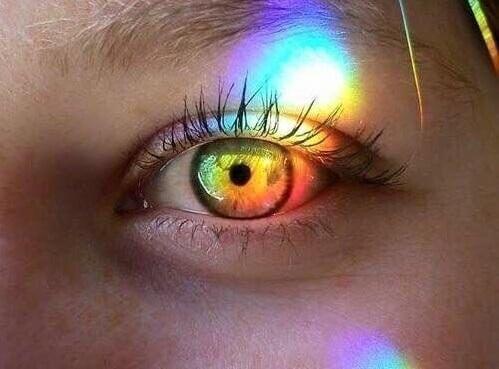 prisma silmässä