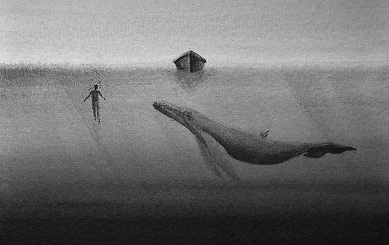 valas ja ihminen meressä