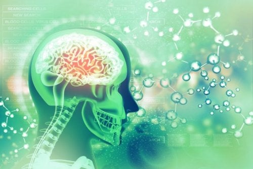 foolihapon hyödyllisyys aivoille on mieletön