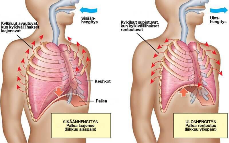 ahdistus voi aiheuttaa huimausta, ja tällöin tulee hengittää oikein