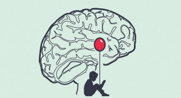 valehtelijan aivot ja poika lukemassa
