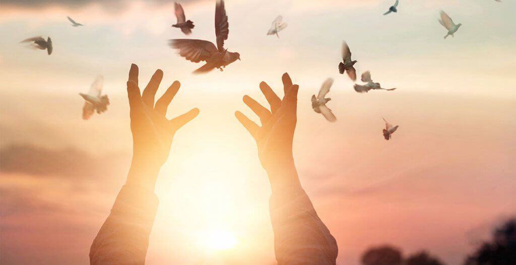 kädet kurottavat lintuja