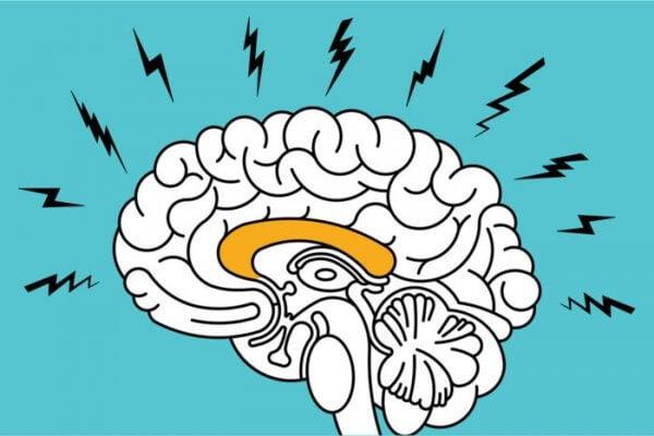 sähköiset aivot