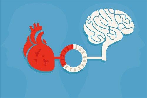 Järki ja tunteet: tasapaino, joka saa aikaan hyviä valintoja