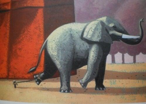 Kaunis tarina kahlitusta elefantista