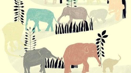 yksi pieni elefantti marssi näin