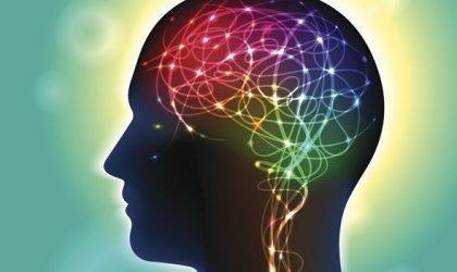 Anandamidi: välittäjäaine, joka vaikuttaa onnellisuuteen