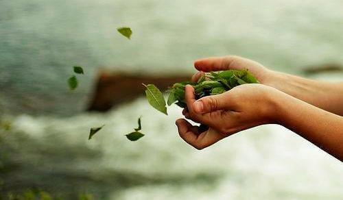 lehdet lentävät käsistä