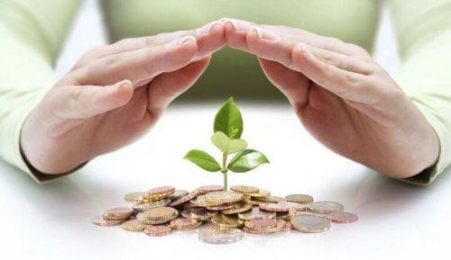 rahapuu kasvaa