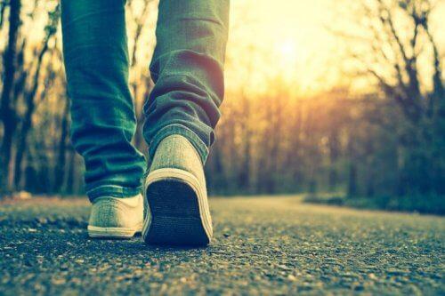 kävelee polullaan