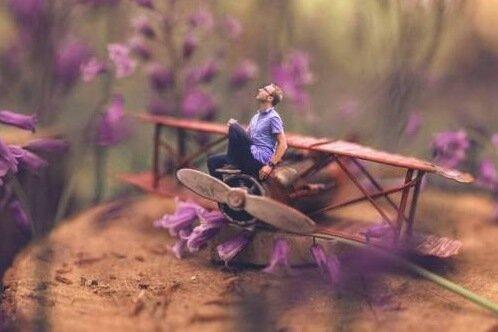 pieni mies pienessä lentokoneessa