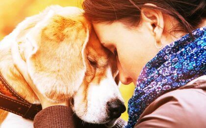 Miksi rakastamme eläimiä niin paljon