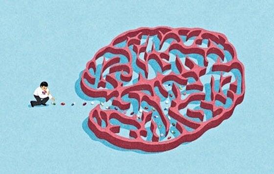 polku aivoihin