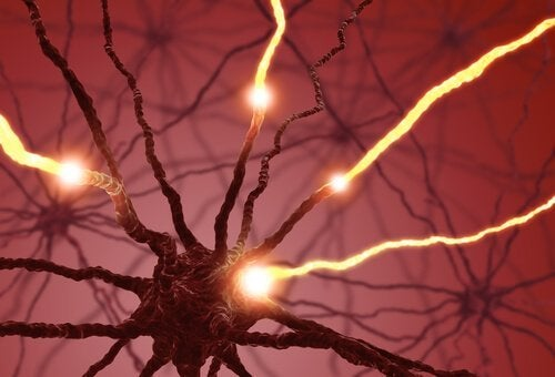 neuroni