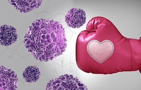 nyrkkeilyhanska päihittää rintasyövän