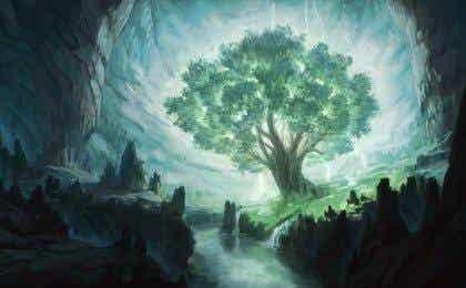 Toivomusten puu, Oshon tarina