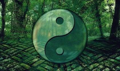 Laozin 7 lainausta, jotka auttavat sinua kehittymään