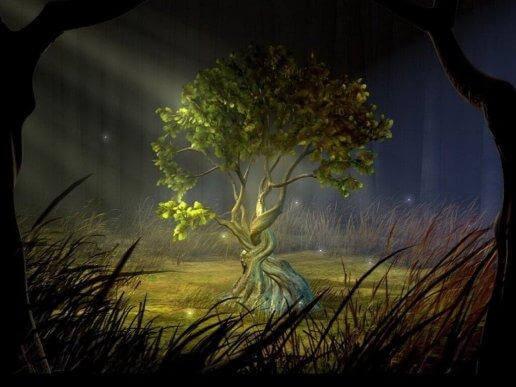 toivomusten puu pimeässä