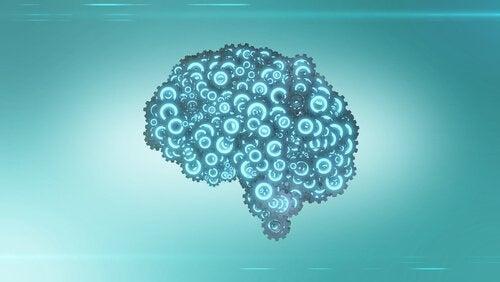 aivot ja vasenkätisyys