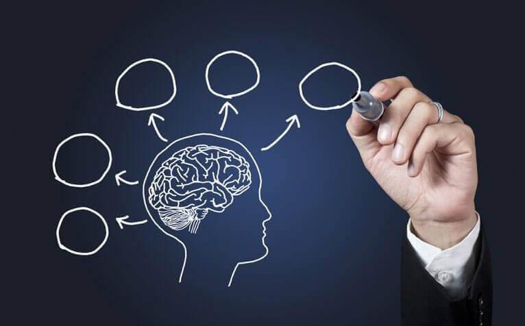 10 syytä opiskella psykologiaa