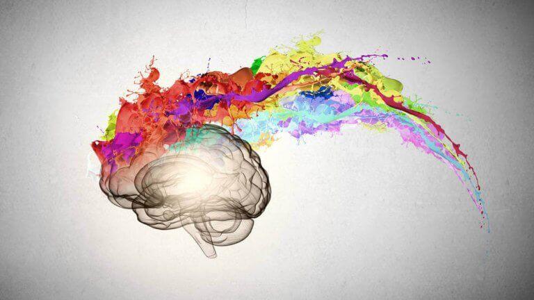 aivoista leviää paljon värejä