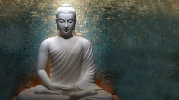 5 buddhalaista neuvoa kaaoksen hallitsemiseksi