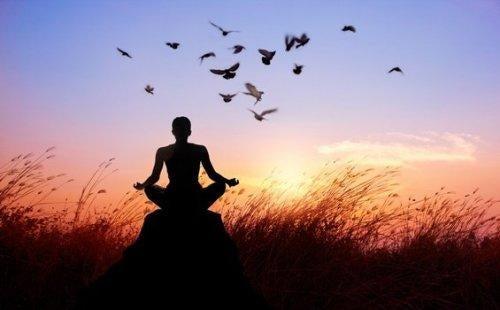 meditointia iltaruskossa