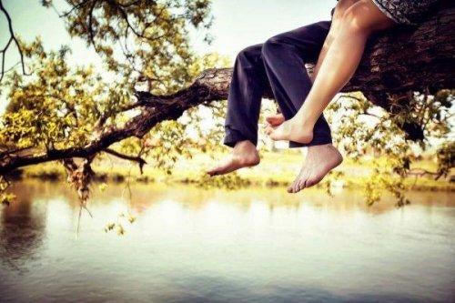 pari istuu puussa ja nauttii päivästä