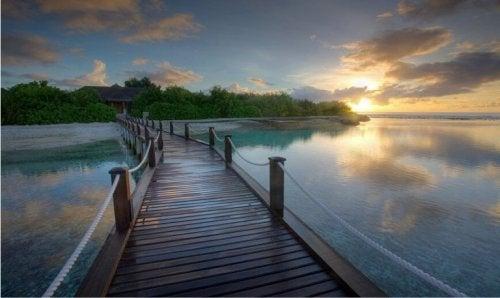 Kärsivällisyyden tärkeys: joki ja silta