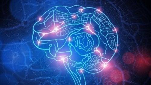 Nöyryyttäminen on hyökkäys: aivot